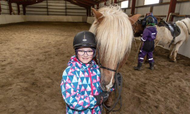 Æskan og hesturinn