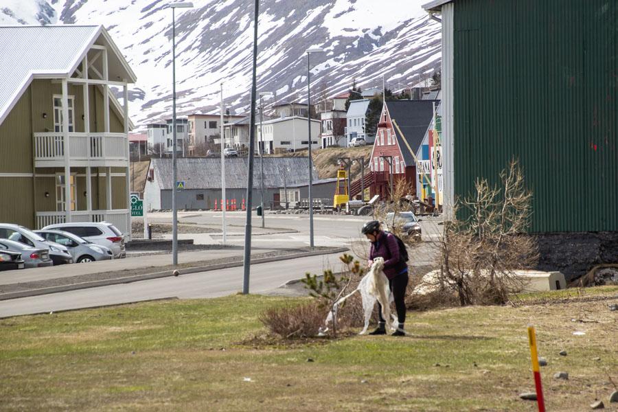 Plokk í Fjallabyggð