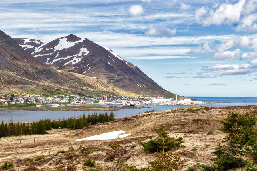 Bauð sig fram á báðum listum og var formaður kjörnefndar