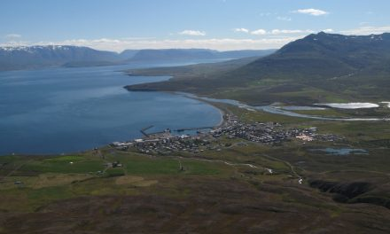 Dalvíkurbyggð 20 ára í dag