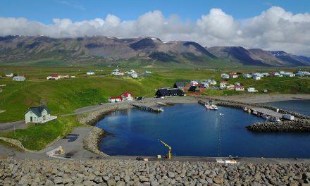 Bændamarkaður Hofsósi