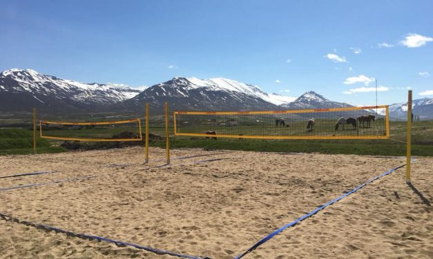 Tveir strandblakvellir í Dalvíkurbyggð
