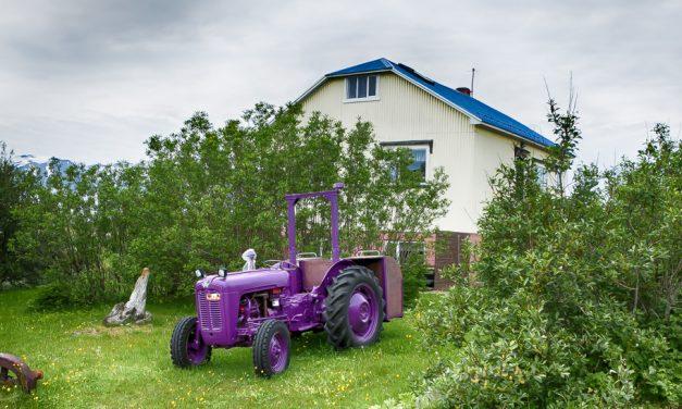 Hríseyjarhátíð 2018