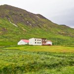 Hæ, hó, hopp og hí – og hundaskítur á Hóli