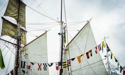 Skandinavísk landlega í máli og myndum