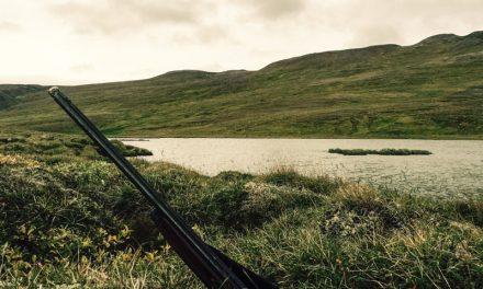 Gæsaveiðitímabilið hafið