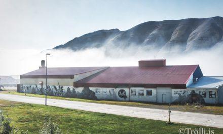 Heilbrigðiseftirlitið svarar spurningum um ólyktina í Ólafsfirði