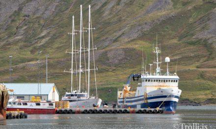 Klára dýpkun við Bæjarbryggju á Siglufirði
