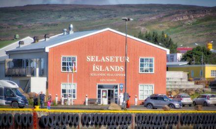 Selasetrið á Hvammstanga tilnefnt til Evrópuverðlauna