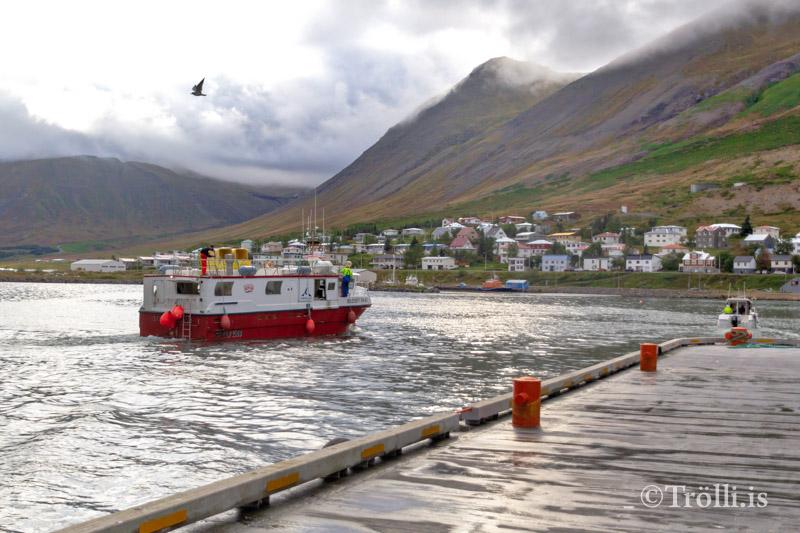 Aflatölur frá Fjallabyggð