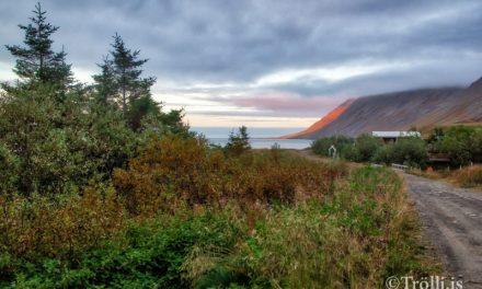 Lóðaúthlutanir á Siglufirði
