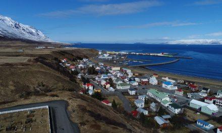 Tún til leigu á Nöfunum á Sauðárkróki