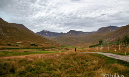 Ný stjórn Golfklúbbs Siglufjarðar
