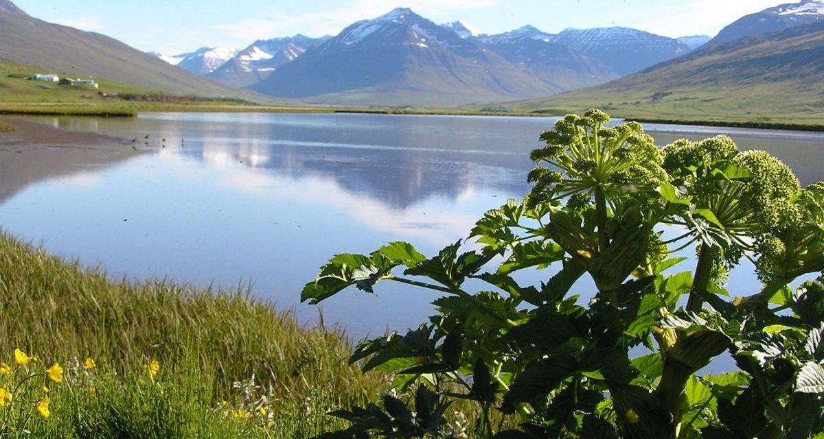 Nýr umsjónarsamningur Friðlands Svarfdæla