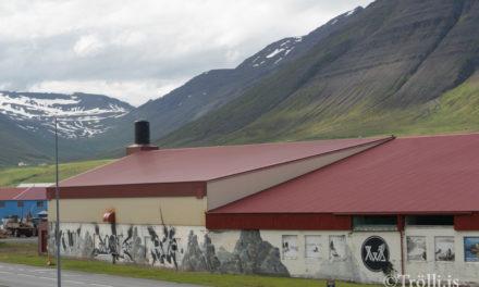 Er ólykt í Ólafsfirði ?