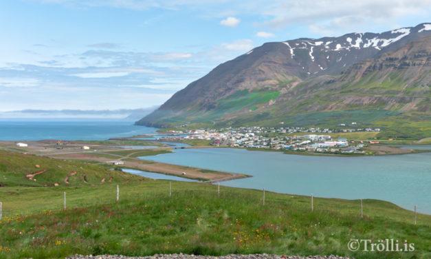 Samningur við Skógræktarfélag Ólafsfjarðar