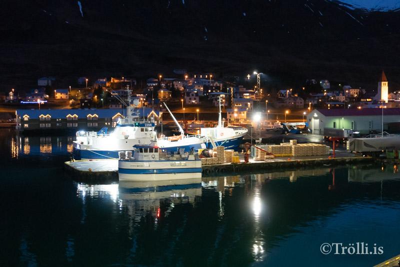 Niðurstöður vorleiðangurs 2019