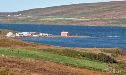 Brjálað stuð á Borðeyri