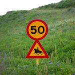 Umferðahraði færður niður í 35 km/klst.