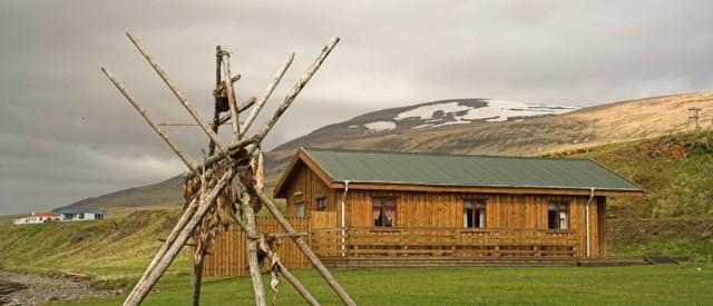 Kaffihlaðborðið í Hamarsbúð