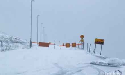 Snjóflóð falla á Tröllaskaga
