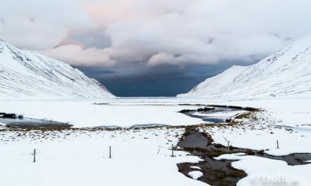 Maður ársins á Trölla – Nafnalisti