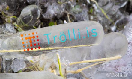 Trölli.is með 729.666 flettingar 2019