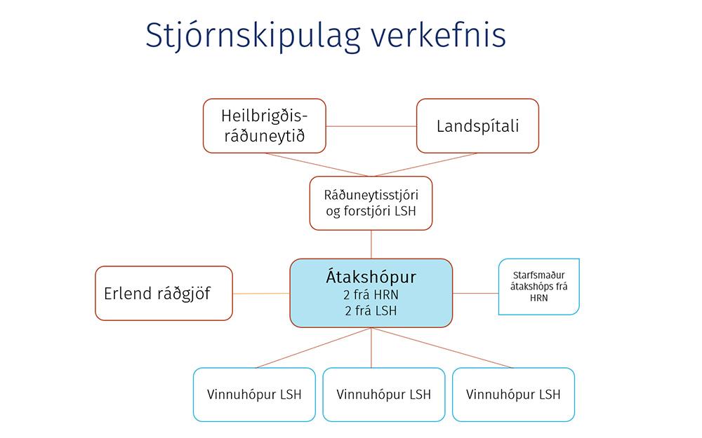 Átakshópur skipaður vegna bráðamóttöku Landspítala