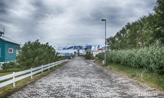 Hríseyjarskóli heilsueflandi grunnskóli