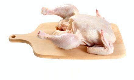 Grunur um salmonellu í kjúklingi