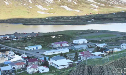 Bás ehf sér um gerð göngustígs á Leirutanga
