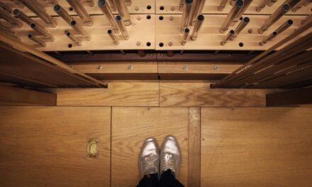 Sýningin The Organs of the Organ á Akureyri – í dag