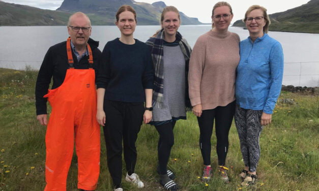 Skemmtilegt sumarsamfélag í Djúpavík