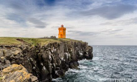 Fjöldi Íslendinga hefur heimsótt Grímsey í sumar