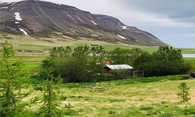 Til sölu – Sælureitur í Fljótum