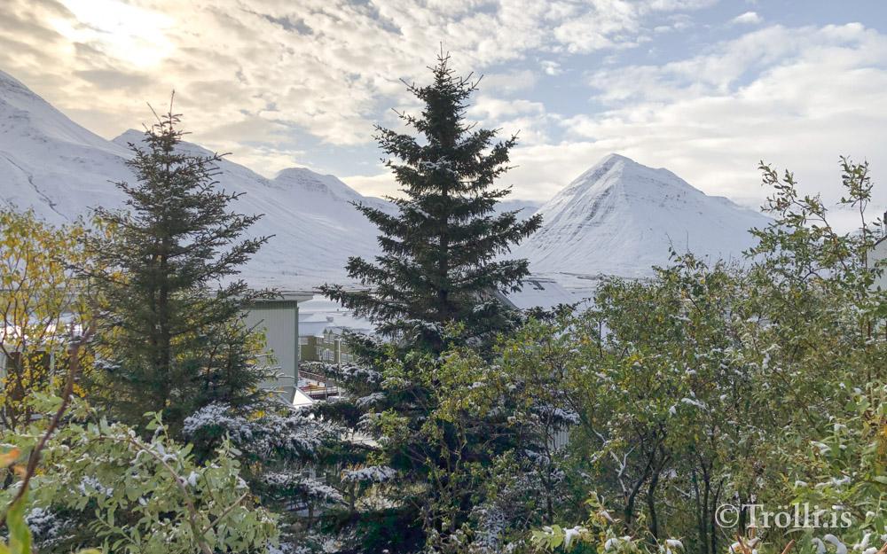 Snjór á Siglufirði