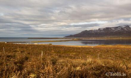 Félagsmiðstöð á flakki – frestað
