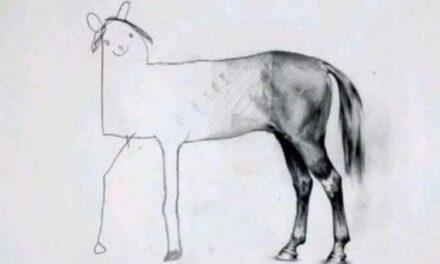 Húnaklúbburinn með Drawing Workshop