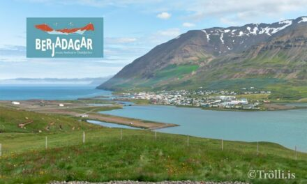 Berjadagar vilja styrk vegna áfallins kostnaðar