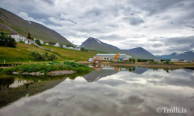 Umsóknir um styrki Fjallabyggðar