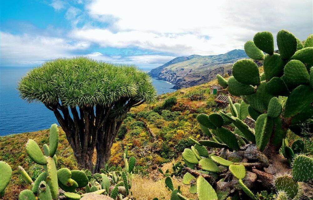 La Palma – Eldfjallaeyjan fagra